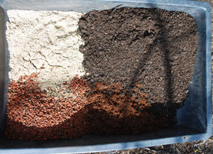 Basic Potting Soil Recipe