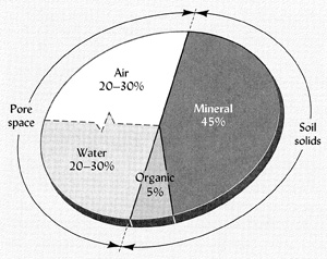 Soil Composition Chart