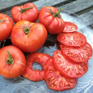 Beefsteak Tomato Varieties—'Brandywine Pink' consistently wins tomato tasting competitions