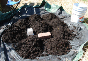 Separate Worm Castings into Several Small Mounds